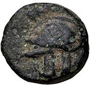 Bronze Æ10 (Achilleion) – avers