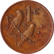 1 cent (Nicolaas J. Diederichs) -  revers