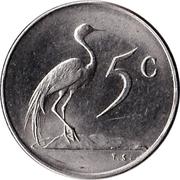 5 cents - Van Riebeeck (en afrikaans - SUID AFRIKA) -  revers