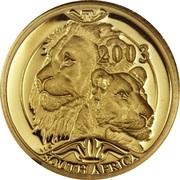 1/10 Ounce / 10 Rand (Lion) – avers