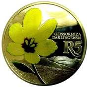 5 Rand (Geissorhiza darlingensis - colorisé) – revers