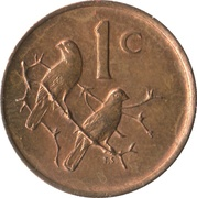 1 cent (SUID-AFRIKA - SOUTH AFRICA) -  revers