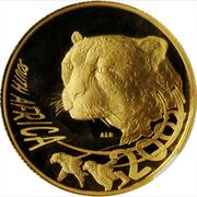 Cheetah, National Geographic Big Cats Initiative -  avers