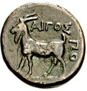 Bronze Æ19 (Aigospotamoi) – revers