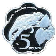 5 Pounds - Elizabeth II (Chameleon) – revers