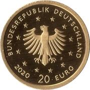 20 Euro  (The white stork) -  avers