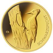 20 Euro (Black Woodpecker) -  avers