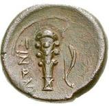 Bronze Æ16 – revers