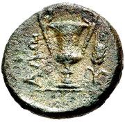Bronze Æ14 (Alopekonnesos) -  avers