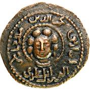1 Dirhem - Najm al-Din Alpi ibn Timurtash - 1152/1176 AD – avers