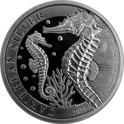 1 Dollar (Seahorse) – revers