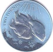 2 Pounds - Elizabeth II (Parrot fish) – revers