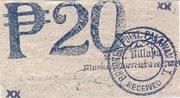 20 Pesos (Palawan; Brooke's Point) – revers