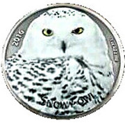 1000 Francs CFA (The snowy Owl) – revers