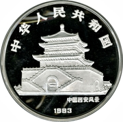 100 Yuán (Year of the Rooster; Silver Bullion Coinage) – avers