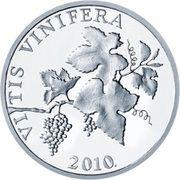2 lipe (Vitis Vinifera) -  avers