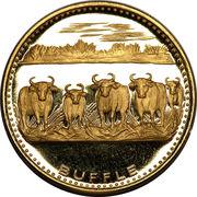 5000 francs (Anniversaire de l'indépendance) – revers