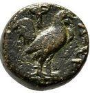 Bronze Æ11 (Dardanos) – revers