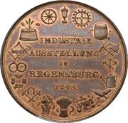 Medaille exposition industrielle a Ratisbonne – revers