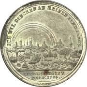 Medal - Flood of Nuremberg 1784 – avers