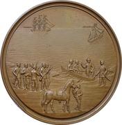 Médaille - Capture of the danish captain Baron Dirking-Holmfeld (Schleswig-Holstein) – avers