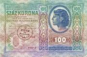 100 Kronen (Over-print) – revers