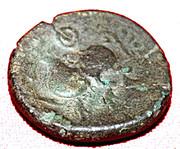Bronze au sanglier des Aulerques Éburovices – revers