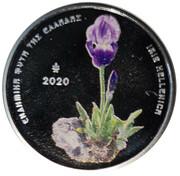 "5 Euro (Endemic Flora of Greece ""Iris hellenica"") – revers"