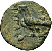 Bronze Æ14 - Tigranes V (Kings of Armenia) – revers
