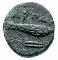 Bronze Æ12 (Harpagion) – revers