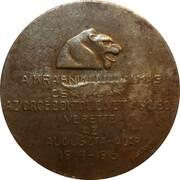 Médaille commémorative de la victoire de Kraznik – revers