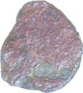 AE Unit - Vaisravana (Maghas of Kausambi) – avers