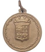 Medal - Nave A 5329 Vesuvio – revers