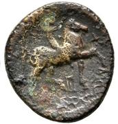 Bronze Æ20 - Kassander – revers