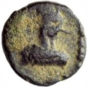 2½ nummi Gélimer (Carthage) – avers