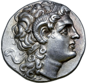 Tetradrachm - Lysimachos (Sestos) – avers
