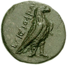 Bronze Æ16 (Kyme) – avers
