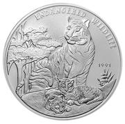 50 kip Tigre – revers