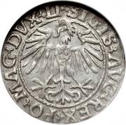 Półgrosz litewski - Sigismond II Auguste – avers