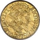 Dukat - Zygmunt II August – avers