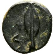 Bronze Æ9 - Timocharis (Marion) – revers