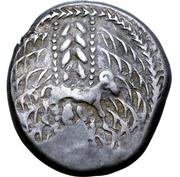 Tetradrachm - West Noricum (Svicca Type) – avers