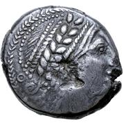 Tetradrachm (Congesa Type) – avers