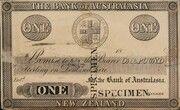 1 Pound (Bank of Australasia) – avers