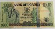 1000 New Shillings – avers