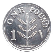 1 pound (Argent) – revers