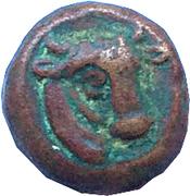 Bronze Æ14 (Pantikapaion) – avers