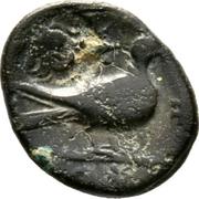 AE15 - Timocharis (Paphos) – revers
