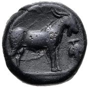 Bronze Æ16 (Paros) -  revers