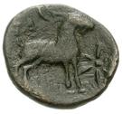 Bronze Æ16 (Paros) – revers